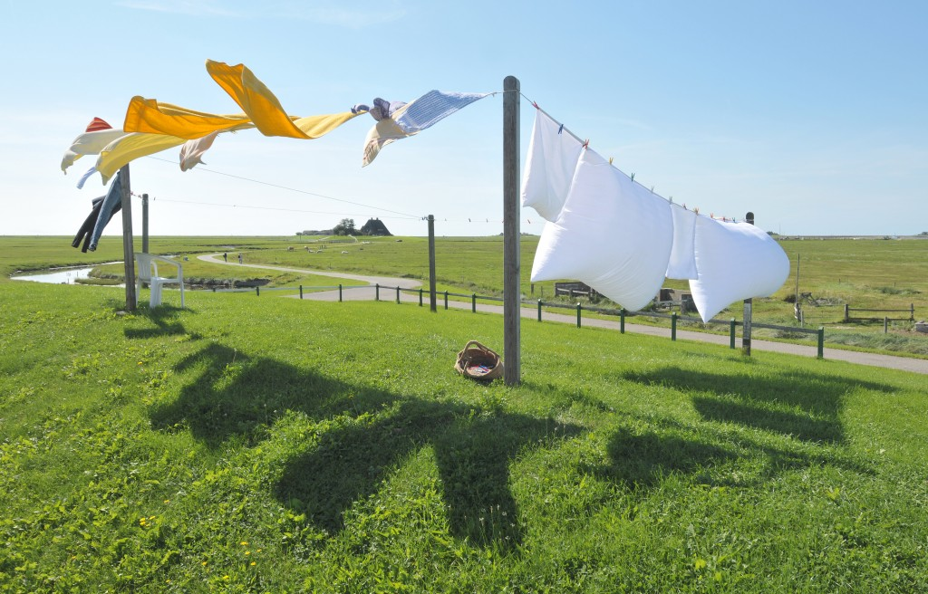 laundry outside on a line